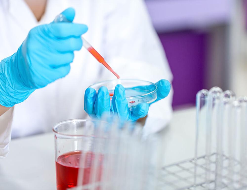 Inicia convocatoria para análisis de E. Coli genérico en alimentos