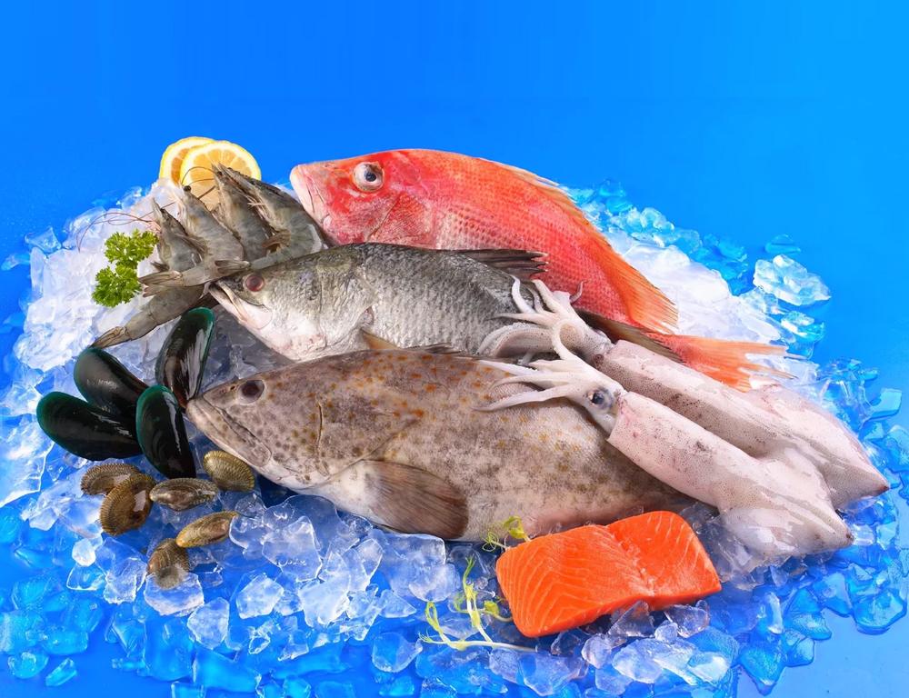 Se exigirá certificado de importación y exportación de productos para la pesca desde y hacia Perú