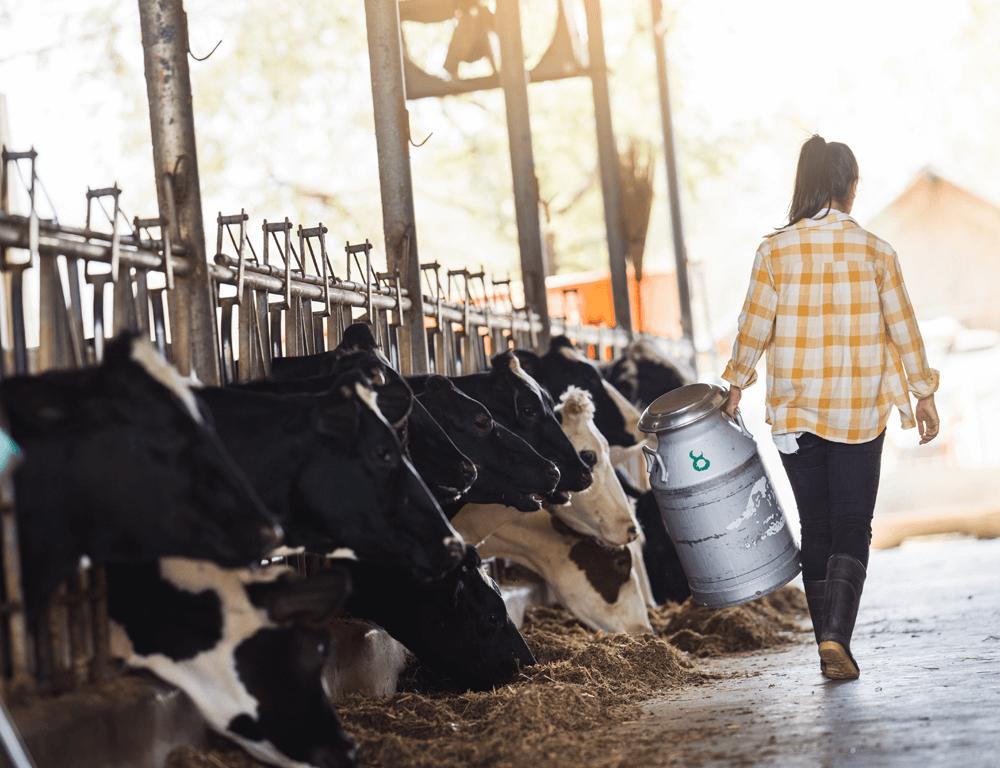 Análisis de lactosuero en la leche